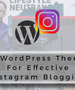 20-WordPress-themes-Effective-Instagram-Blogging-1